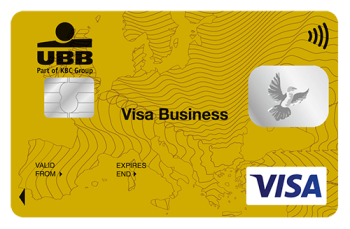 VISA Business Gold Contactles Card