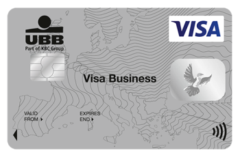 VISA Business Contactless Card